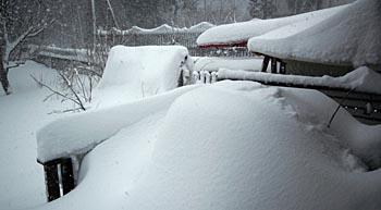 vinter01350