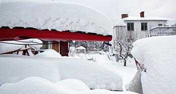 vinter03350